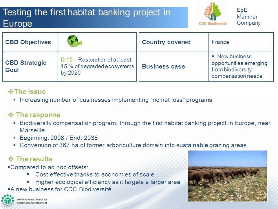 Testing the first habitat banking project in Europe
