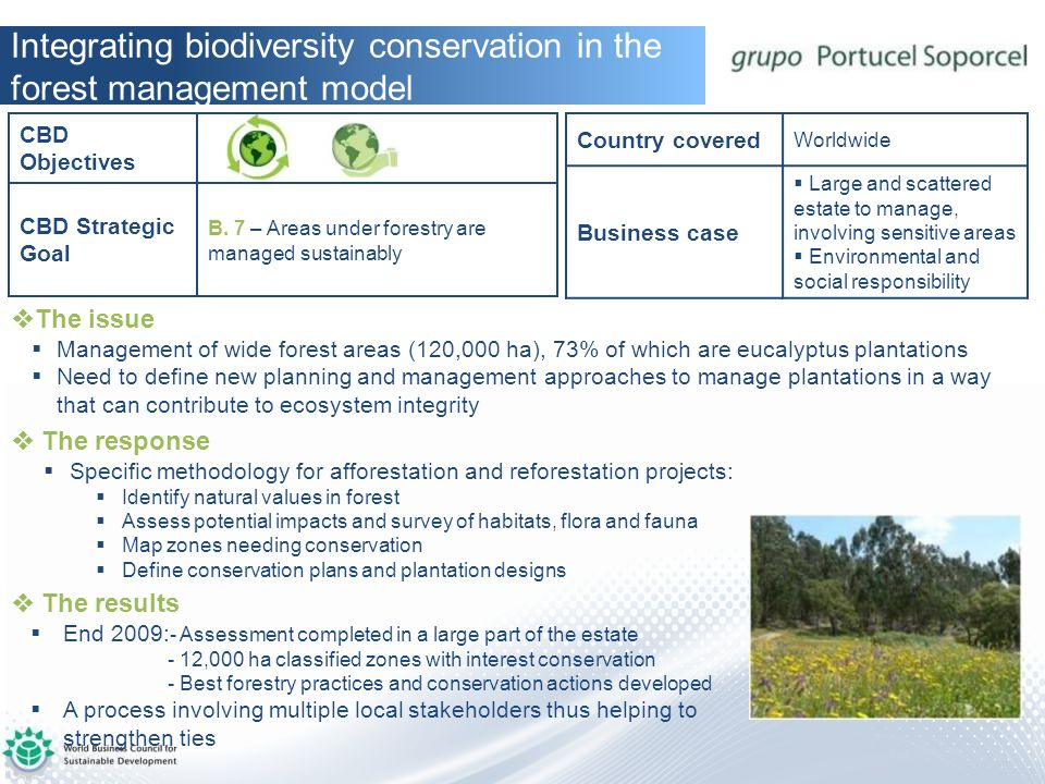 Integrating biodiversity conservation in the forest management model