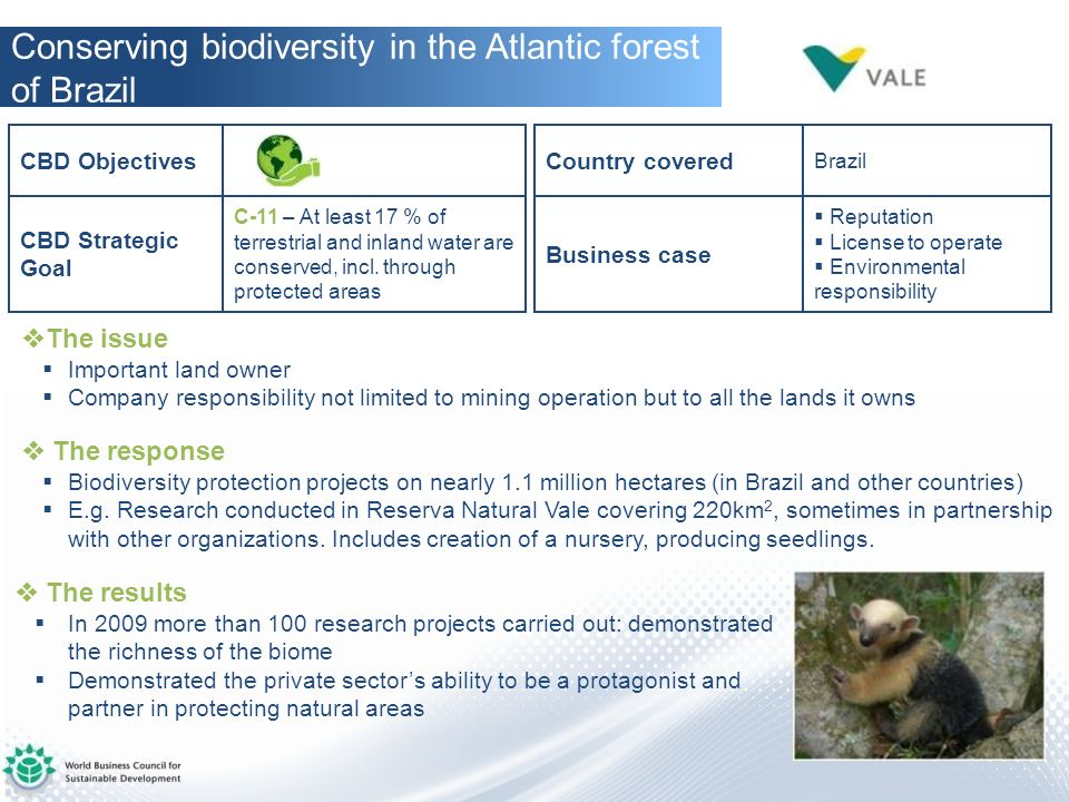 Conserving biodiversity in the Atlantic forest of Brazil