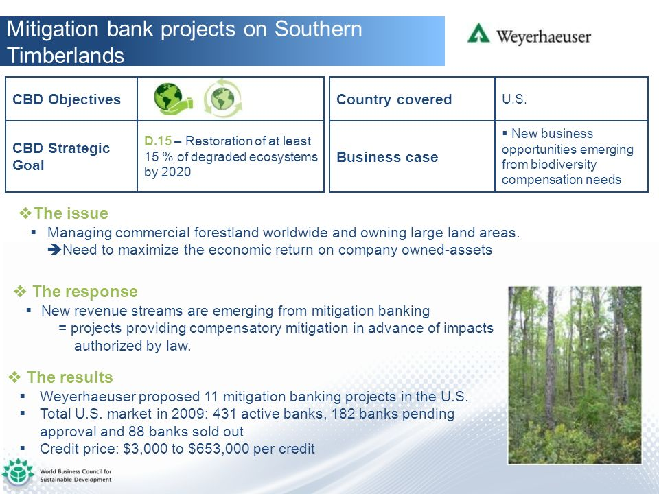 Mitigation bank projects on Southern Timberlands