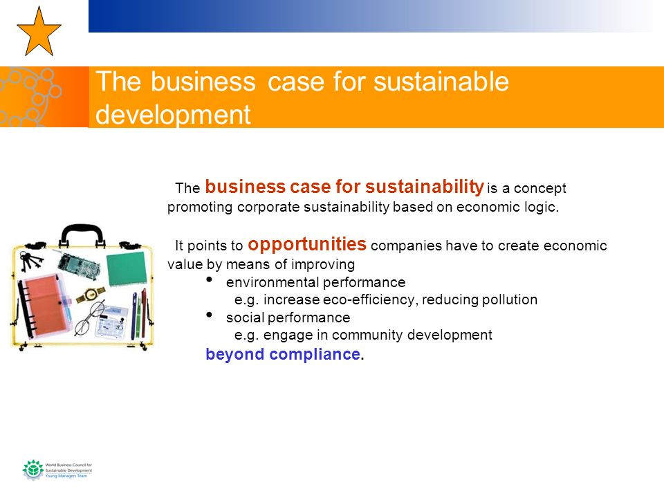 The business case for sustainable development