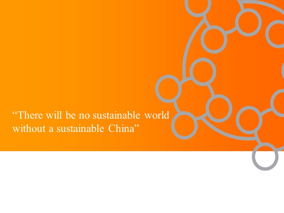 There will be no sustainable world without a sustainable China