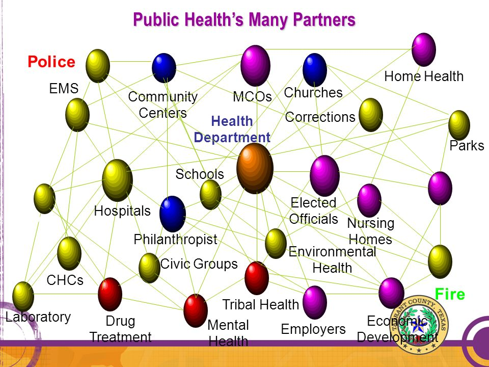 Public Health's Many Partners