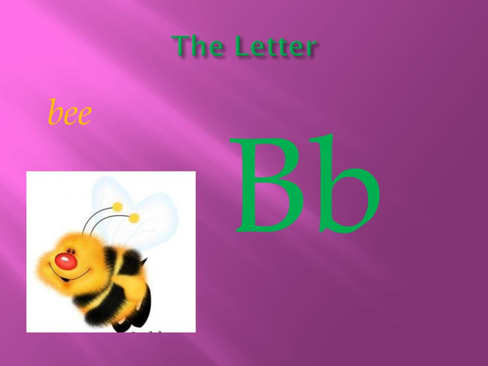 The Letter bee Bb