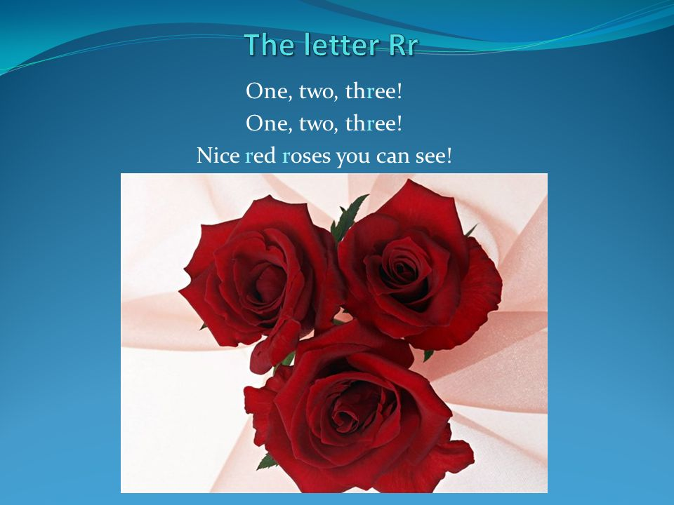 One, two, three! Nice red roses you can see!