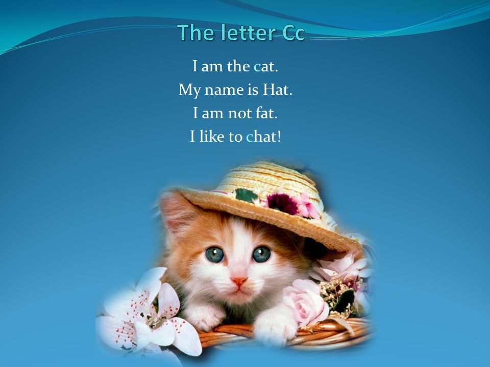 I am the cat. My name is Hat. I am not fat. I like to chat!