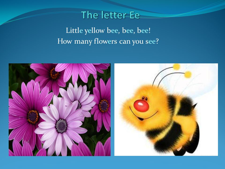 Little yellow bee, bee, bee! How many flowers can you see