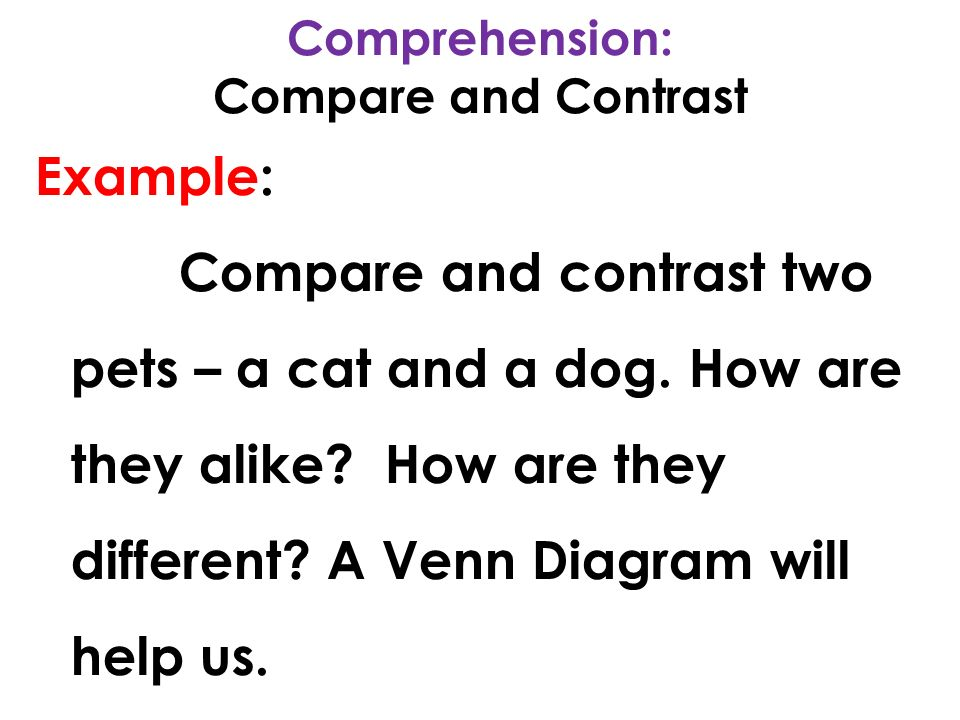 comparison and contrast essay/dog and cat Dogs and cats are among the most popular pets however, their care is drastically different, obviously they do have similarities between the two, they both have hair and are in the mammal family they also give birth to multiple offspring at the same time.