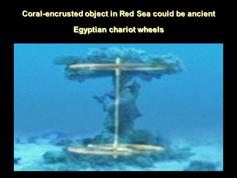 Red sea news ppt video online download 2 coral encrusted object in red sea could be ancient egyptian chariot wheels sciox Gallery