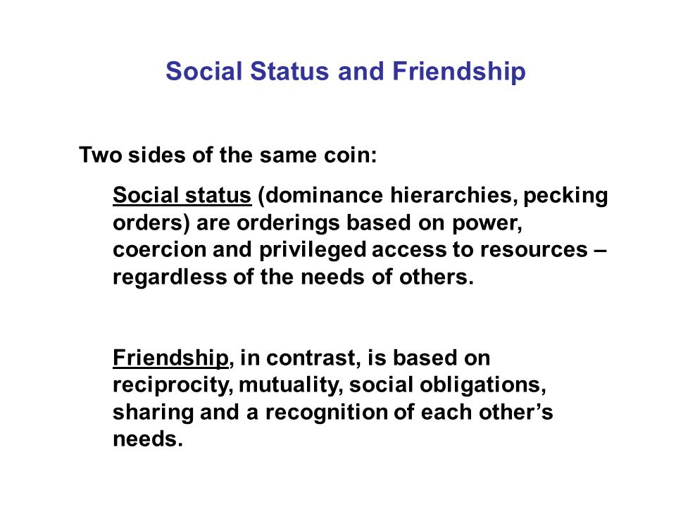 Social Status and Friendship