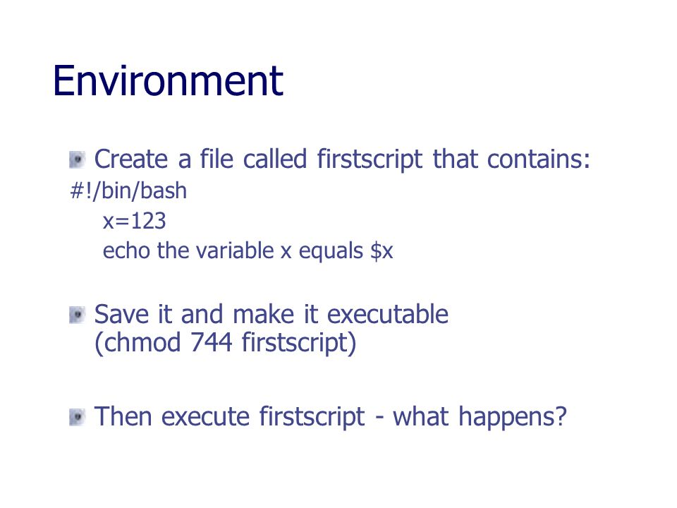 Environment Create a file called firstscript that contains: