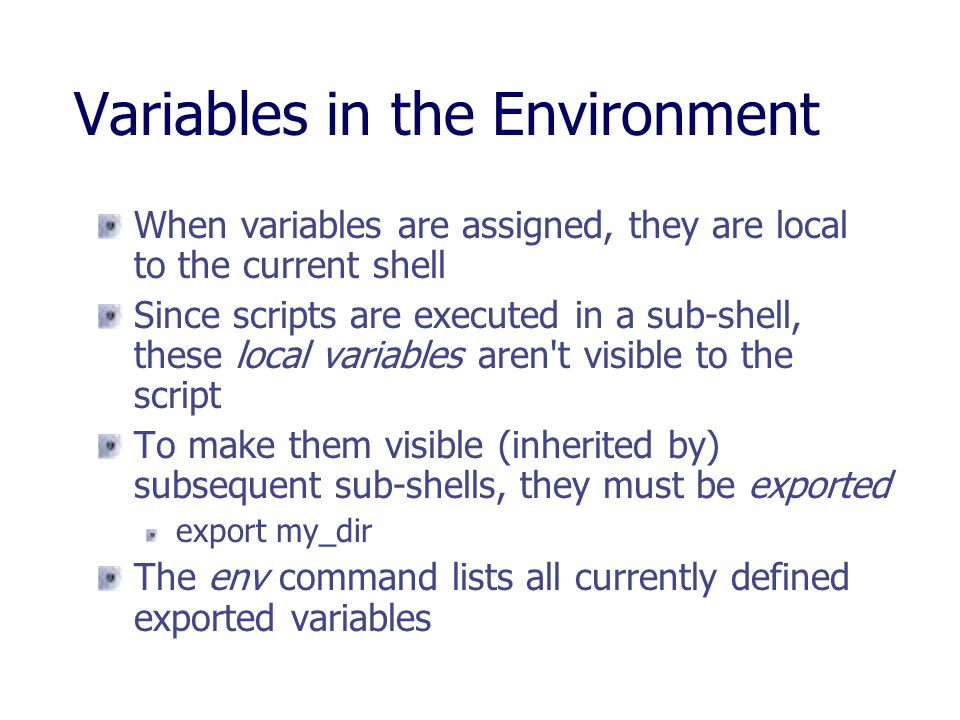 Variables in the Environment