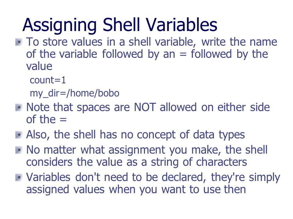 Assigning Shell Variables