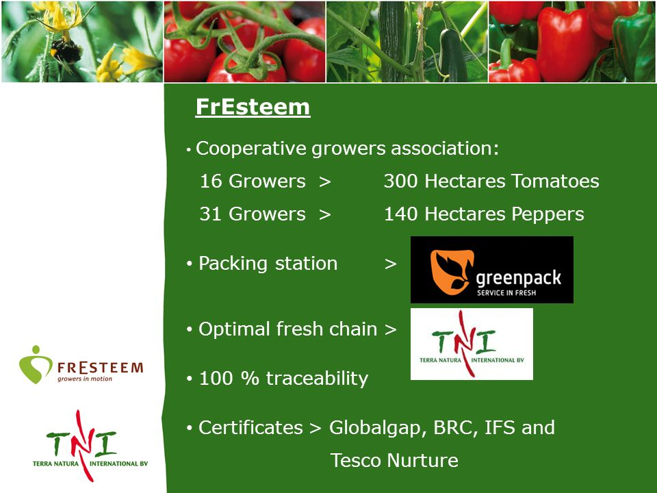 FrEsteem 16 Growers > 300 Hectares Tomatoes