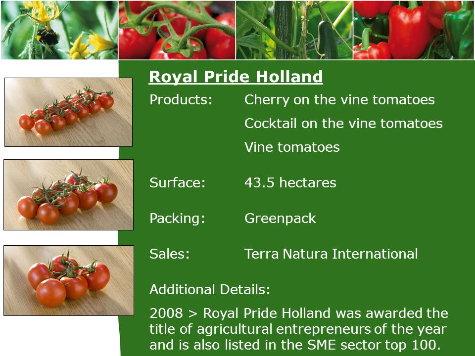 Royal Pride Holland Products: Cherry on the vine tomatoes