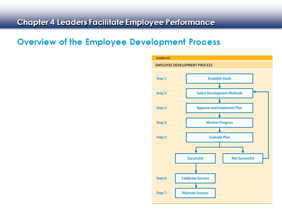 Overview of the Employee Development Process