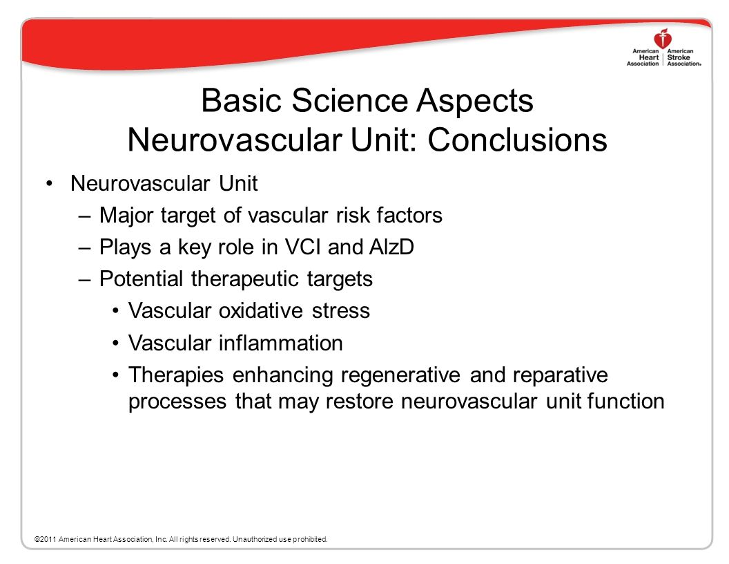 Basic Science Aspects Neurovascular Unit: Conclusions