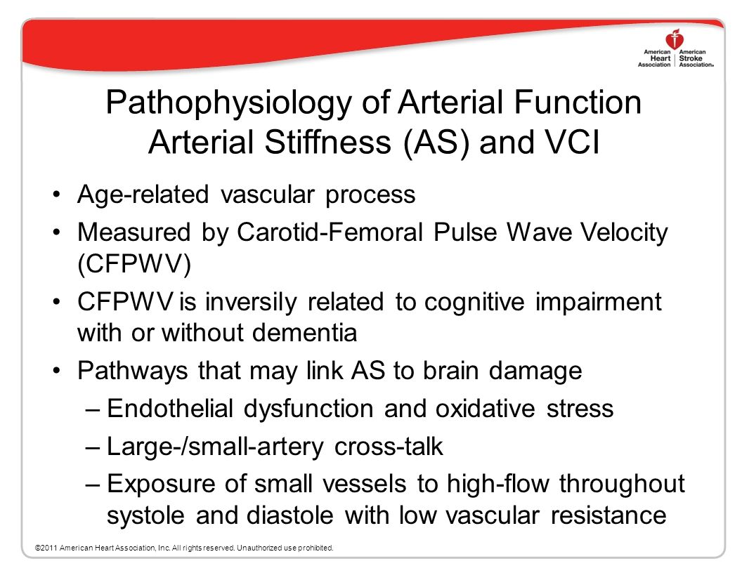 Pathophysiology of Arterial Function Arterial Stiffness (AS) and VCI