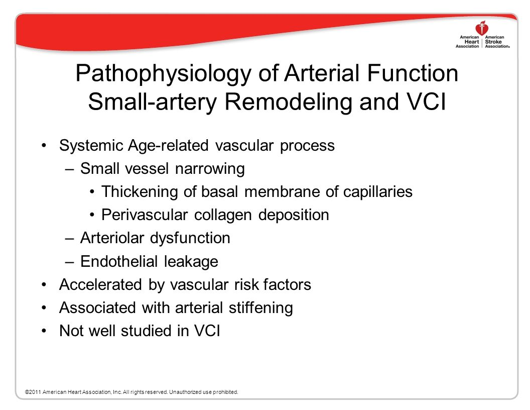 Pathophysiology of Arterial Function Small-artery Remodeling and VCI