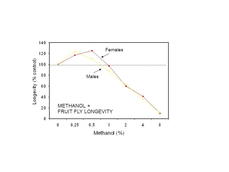 Females Males METHANOL + FRUIT FLY LONGEVITY