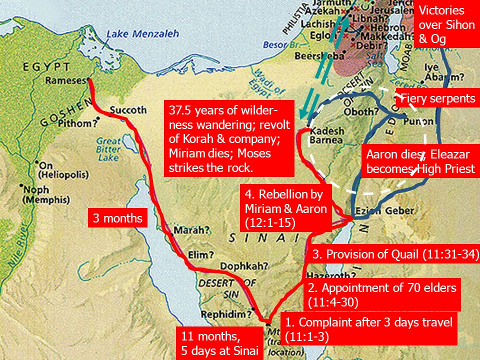 Old testament survey i numbers israels wilderness wanderings 9 victories sciox Gallery