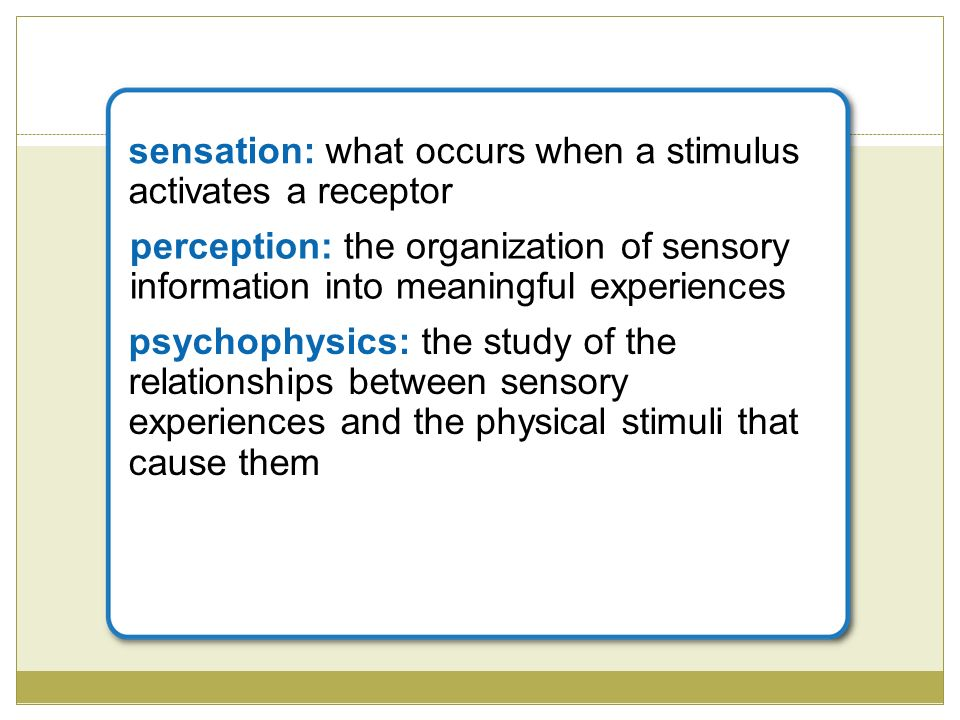 relationship between stimuli and receptors of the eye