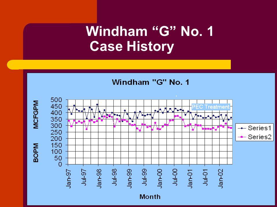 Windham G No. 1 Case History