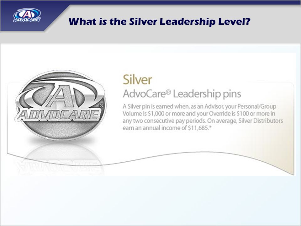What is the Silver Leadership Level