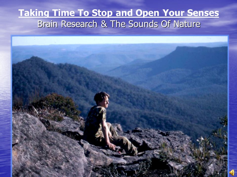 Taking Time To Stop and Open Your Senses Brain Research & The Sounds Of Nature