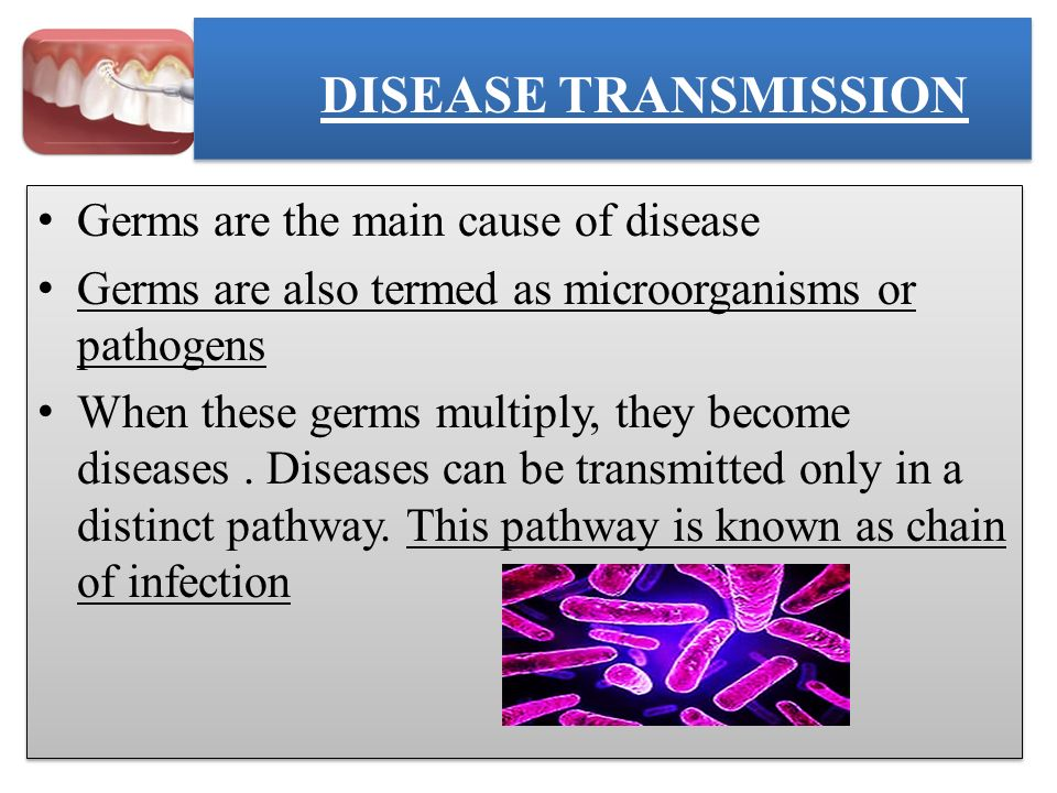 DISEASE TRANSMISSION Germs are the main cause of disease