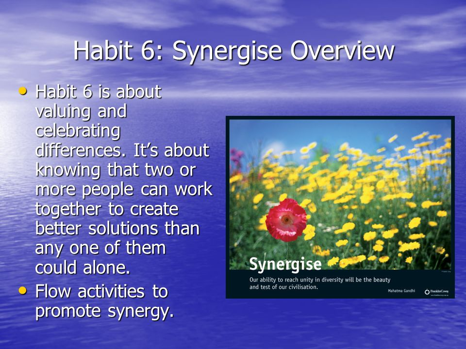 Habit 6: Synergise Overview