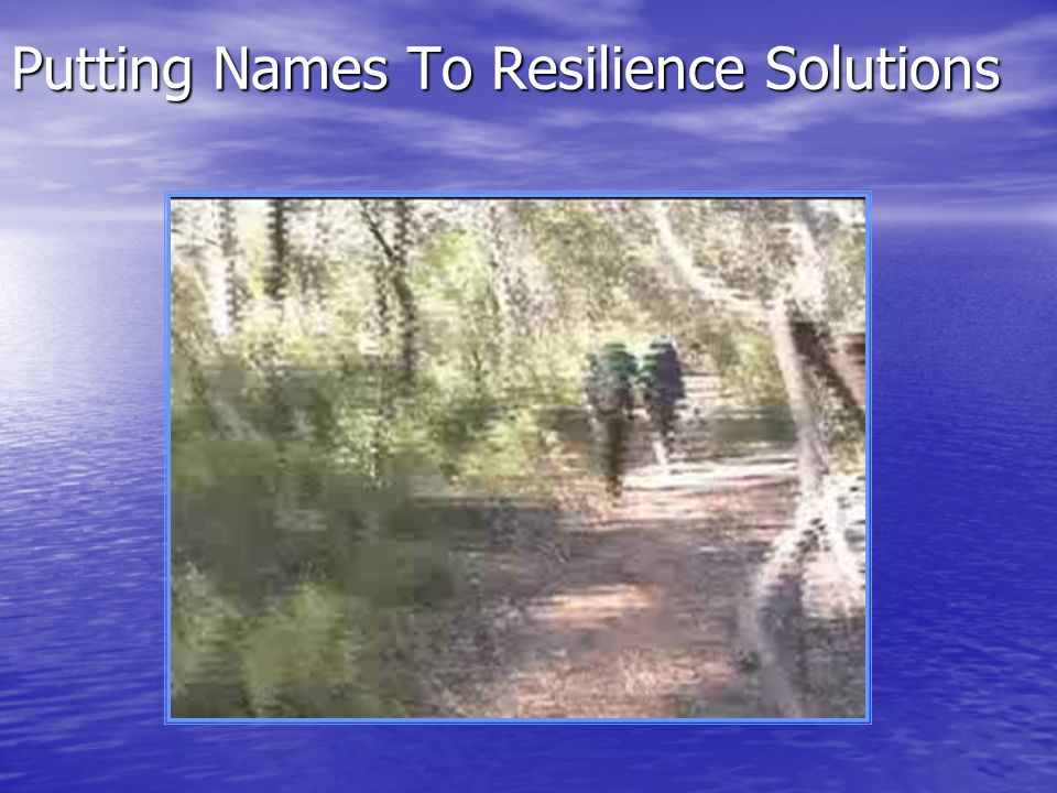 Putting Names To Resilience Solutions