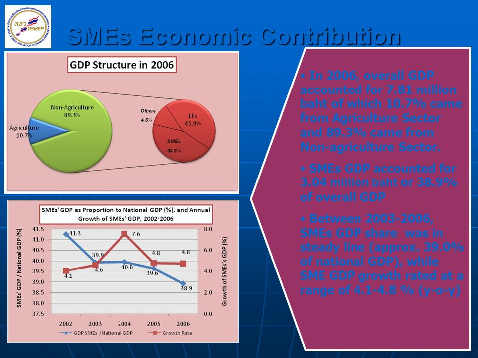 SMEs Economic Contribution