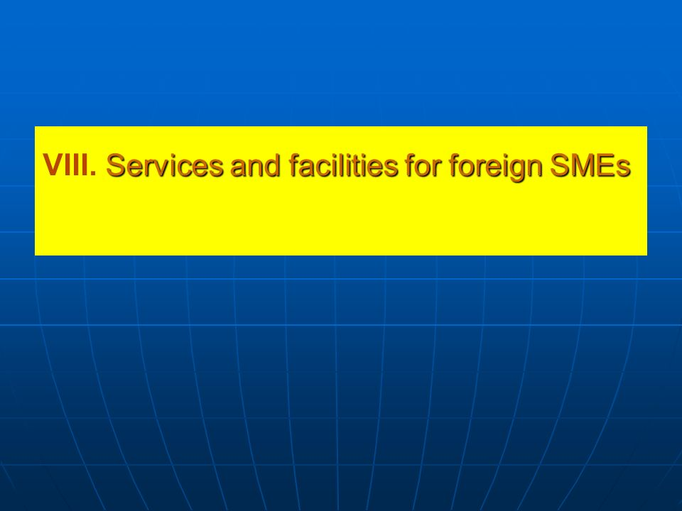 VIII. Services and facilities for foreign SMEs