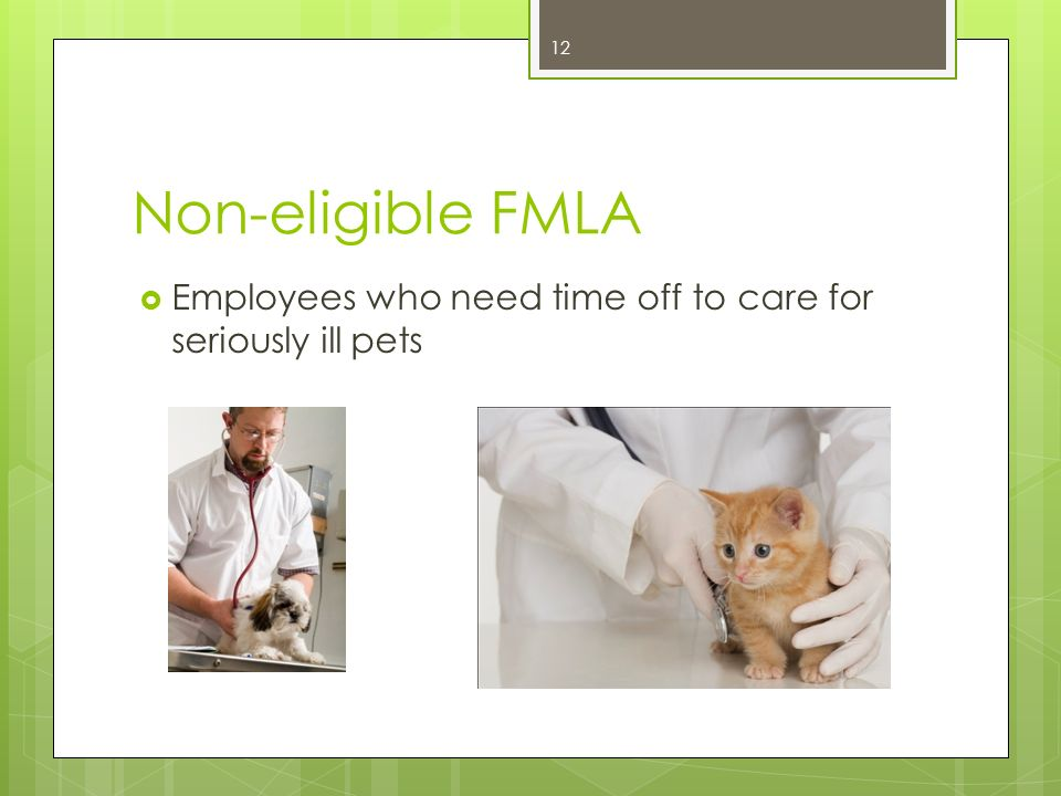 Non-eligible FMLA Employees who need time off to care for seriously ill pets