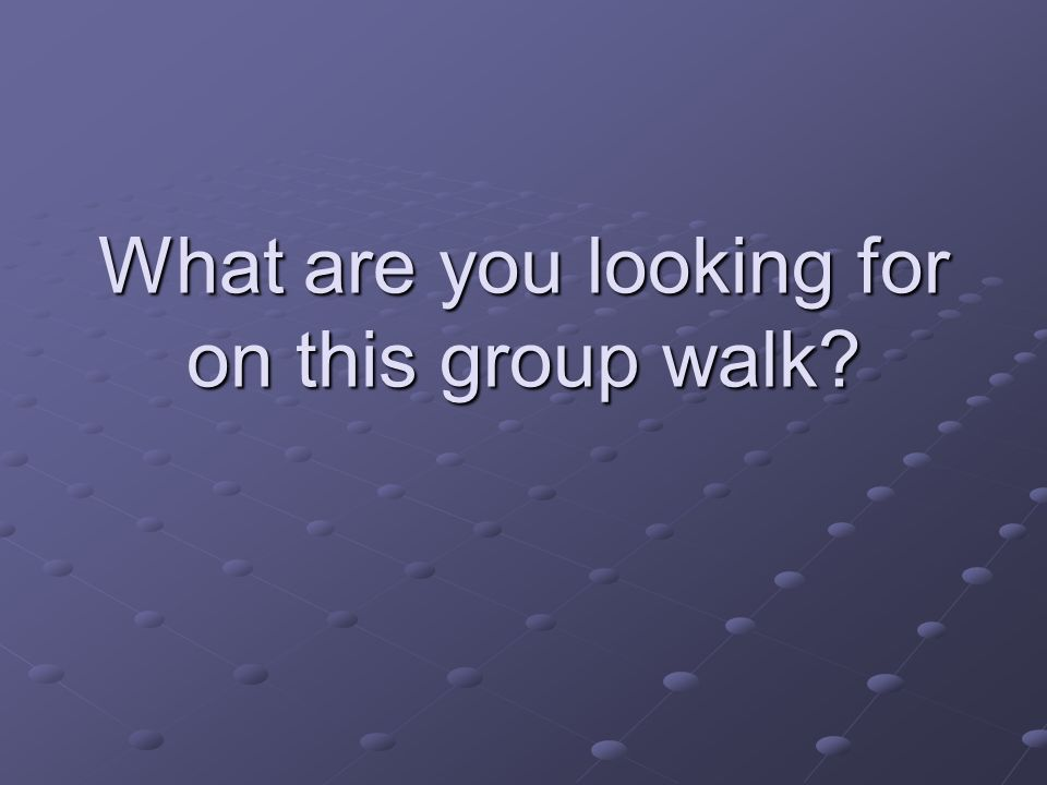 What are you looking for on this group walk