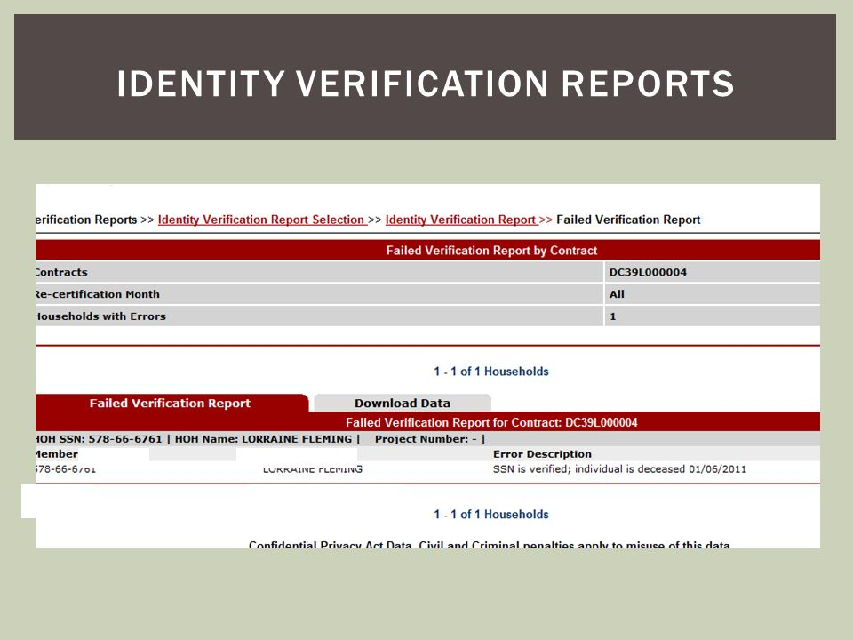 Identity verification reports