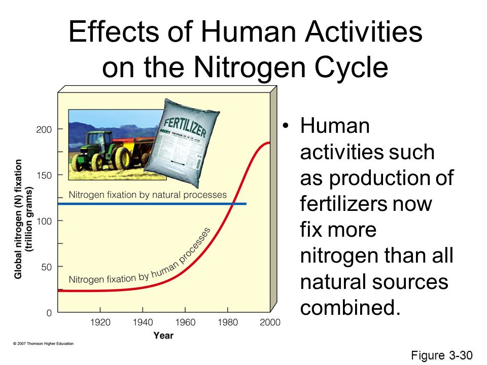human impacts on the carbon nitrogen What impact do human activities have on the nitrogen cycle  the carbon cycle is the biogeochemical cycle by  how does human interaction impacts the nitrogen.