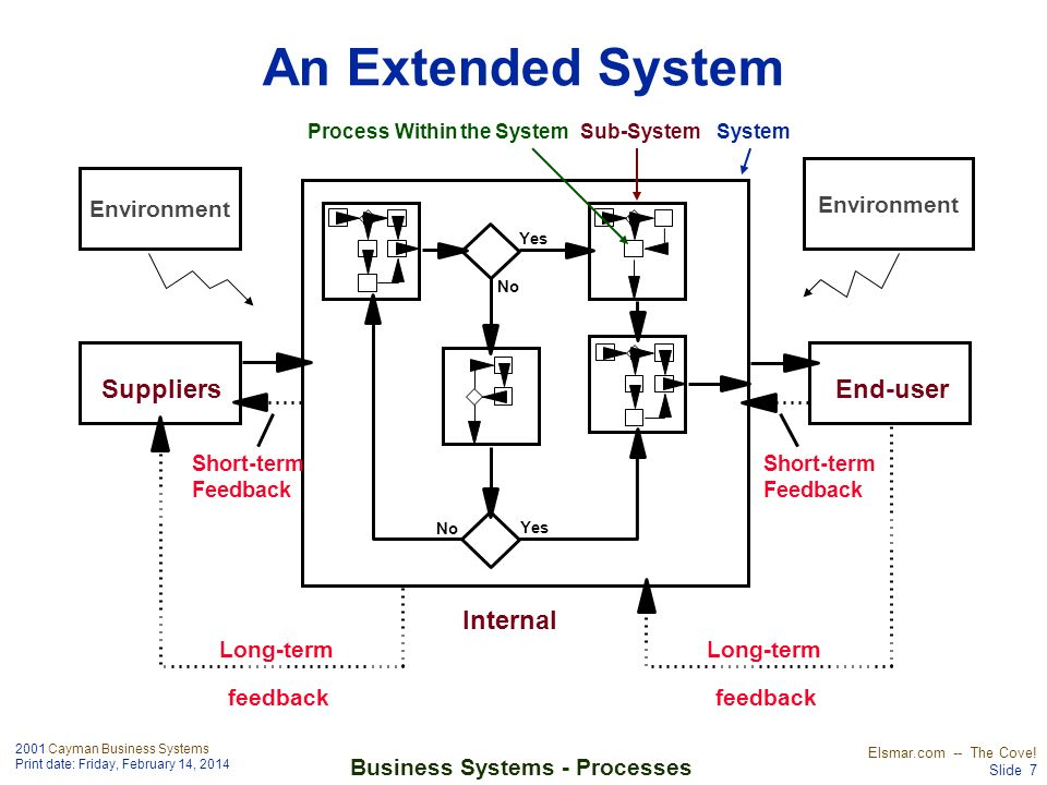 Process Within the System