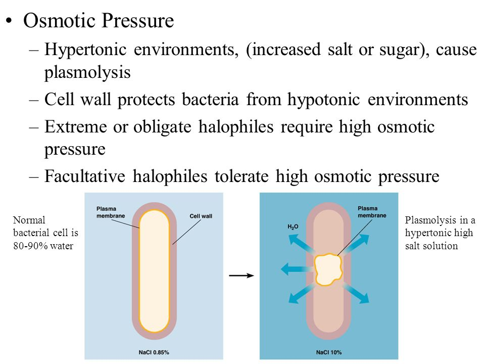how to find osmotic pressure of a solution