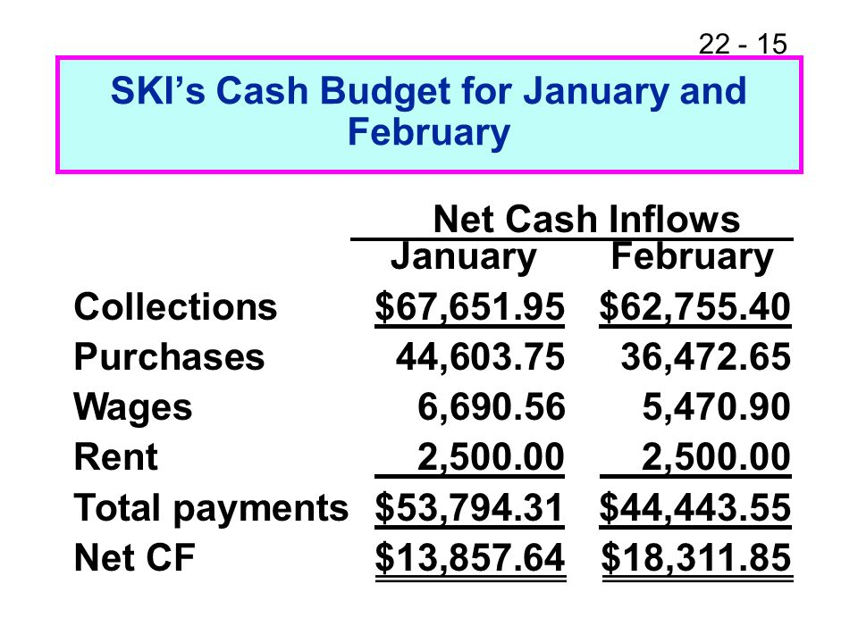 SKI's Cash Budget for January and February