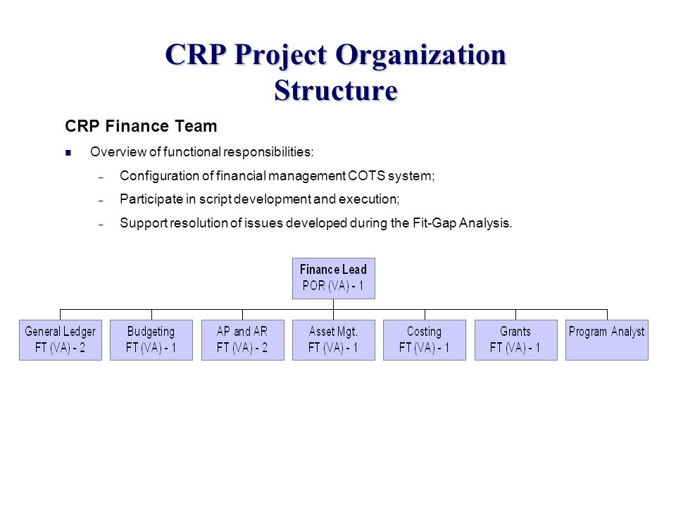 CRP Project Organization Structure