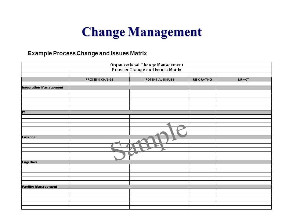 Change Management Example Process Change and Issues Matrix Sample