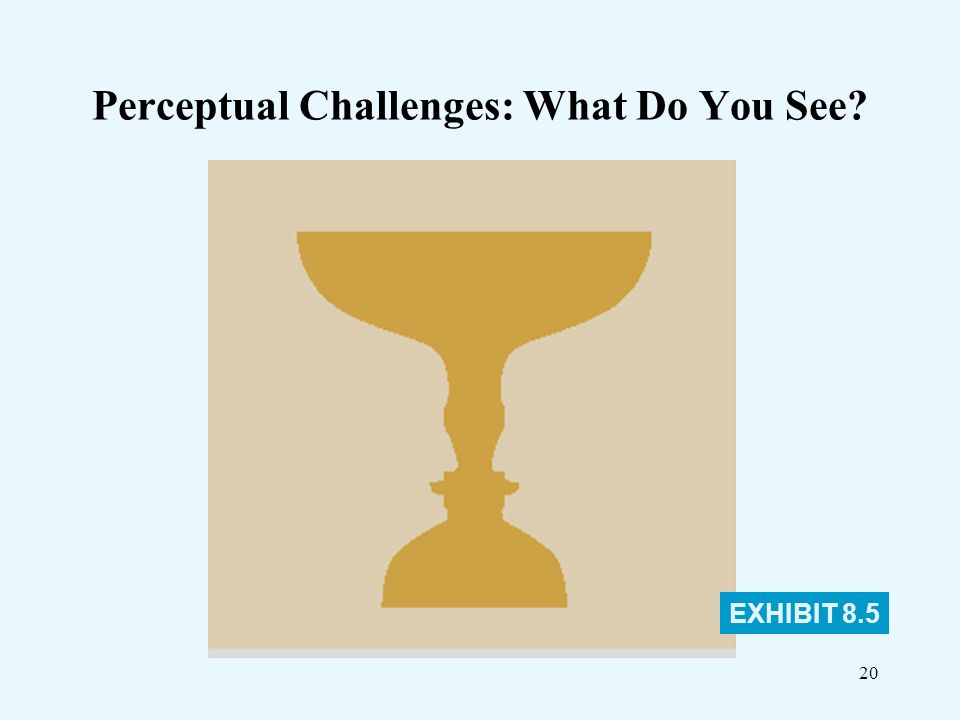"""influence environmental contextual and perceptual essay Perception 1 """" we don't see things as theyare, we see things as we are"""" 2 perception"""" the study of perception is concerned with identifying the process through."""