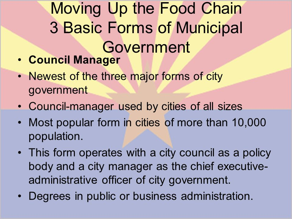 what are the three main forms of municipal government