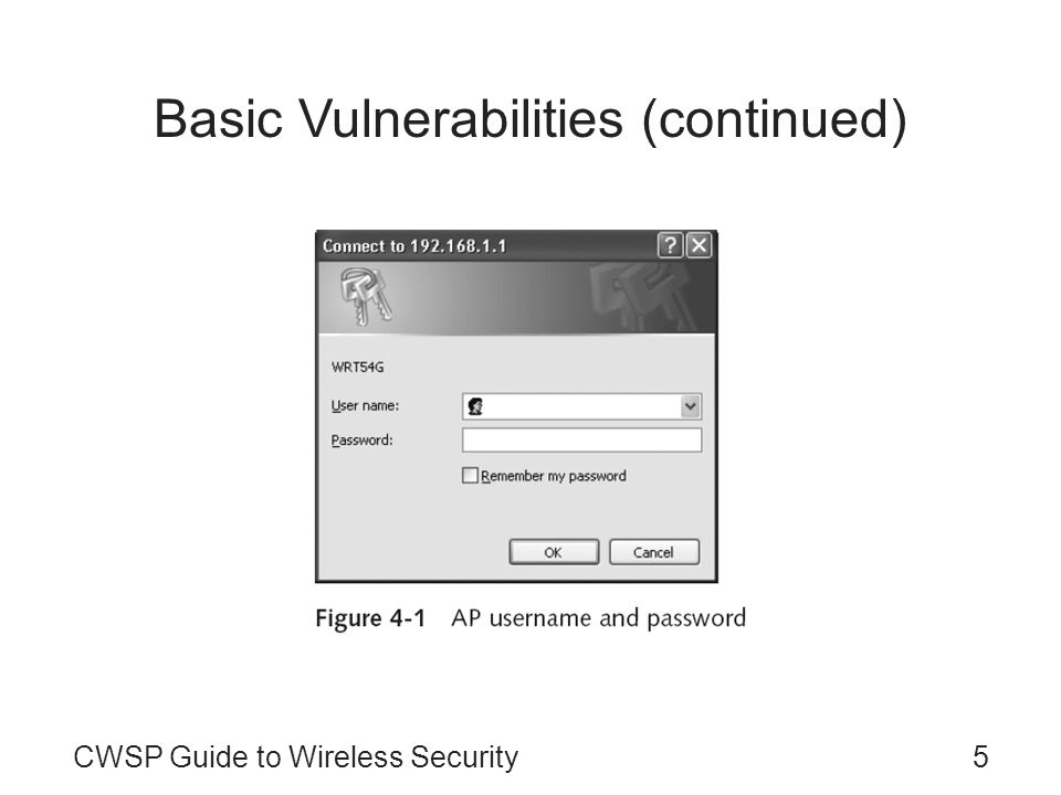 Basic Vulnerabilities (continued)