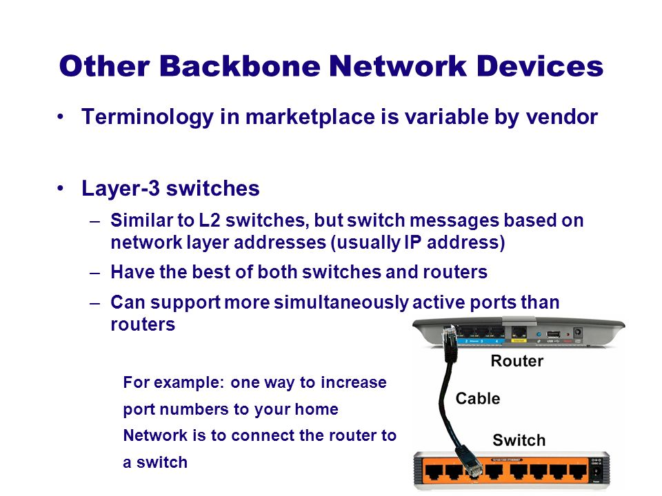 Other Backbone Network Devices