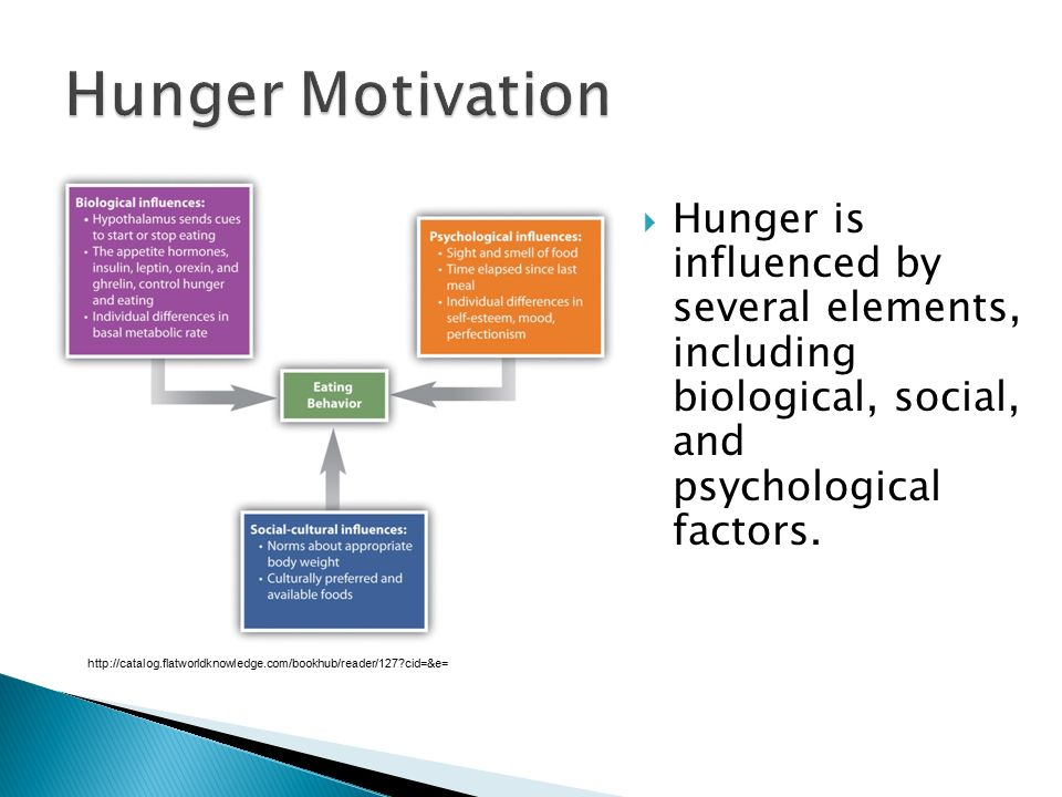 Hunger Motivation Hunger is influenced by several elements, including biological, social, and psychological factors.