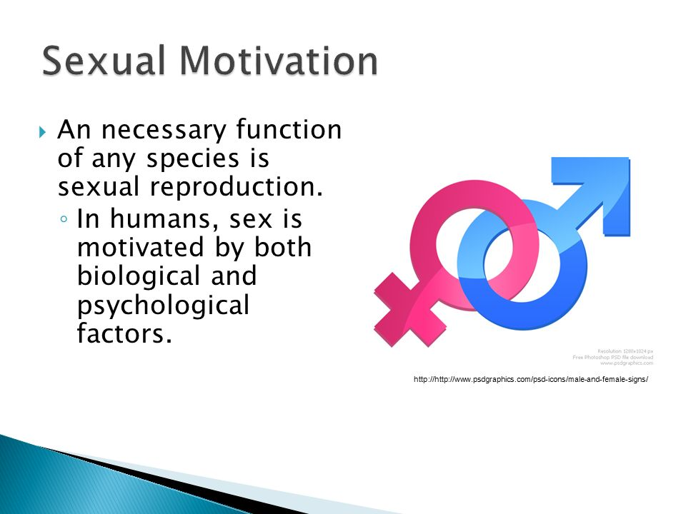 Sexual Motivation An necessary function of any species is sexual reproduction.