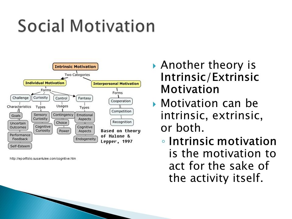 Social Motivation Another theory is Intrinsic/Extrinsic Motivation